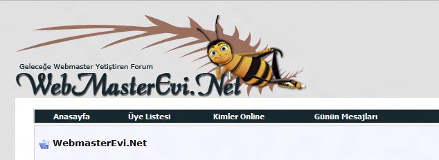 Webmaster Evi